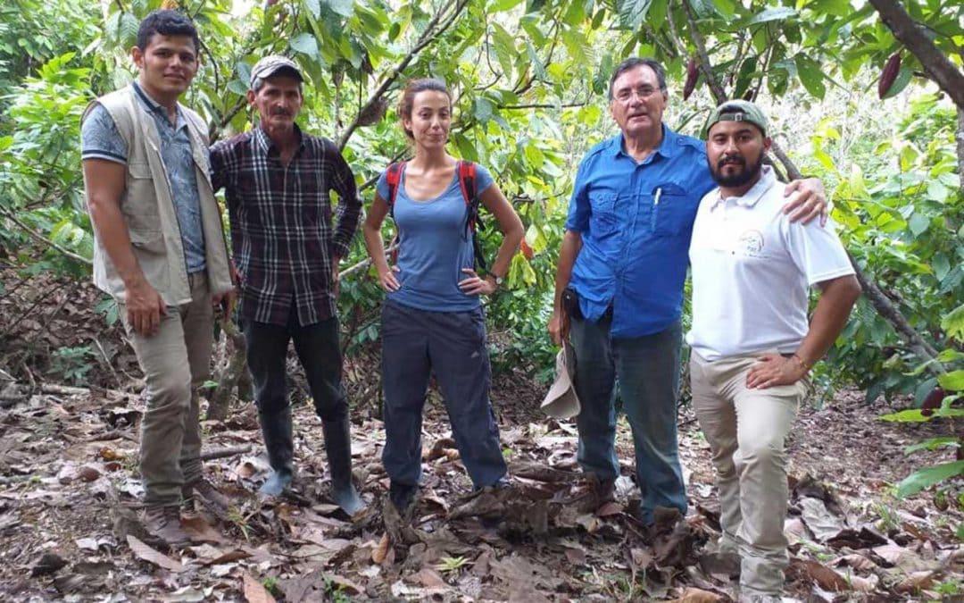 Projeto Territórios Sustentáveis para a Paz em Caquetá recebe apoio técnico do Instituto Superior de Agronomia