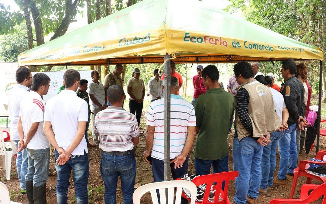 Projeto Territórios Sustentáveis para a Paz em Caquetá organiza Escola de Campo Agrícola sobre Sistemas Agroflorestais Regenerativos com foco no Cacau