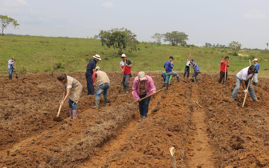 """Projeto Territórios Sustentáveis para a Paz em Caquetá promove Escola de Campo Agrícola sobre """"Sistemas Agroflorestais regenerativos com foco em Produtos Não Lenhosos do Bosque"""""""